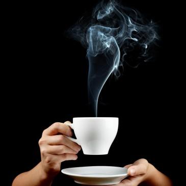 Marca de febrero 2013: Yogi Tea