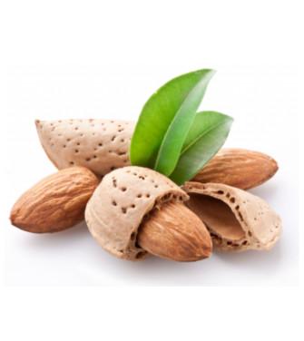 Dispronat presenta dos novedades de su marca Biogut: Mix de semillas y nueces Combigran