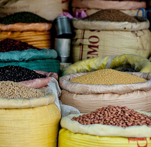Biogut legumbres