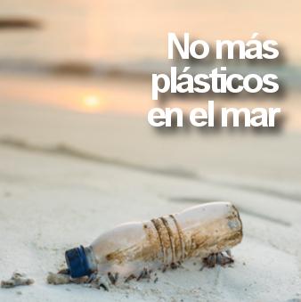 Brushboo, la alternativa sostenible a los cepillos de dientes de plástico