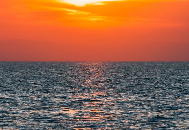 mar de ardora