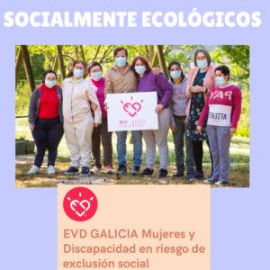 Doctor Koala Socialmente ecológicos